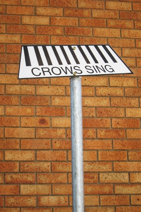 Crow_IMG_8116_sm