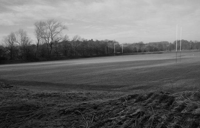rugbypitch.jpg